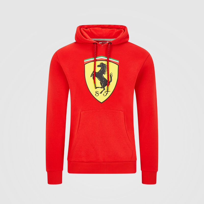 SF FW HOODED SWEAT - red